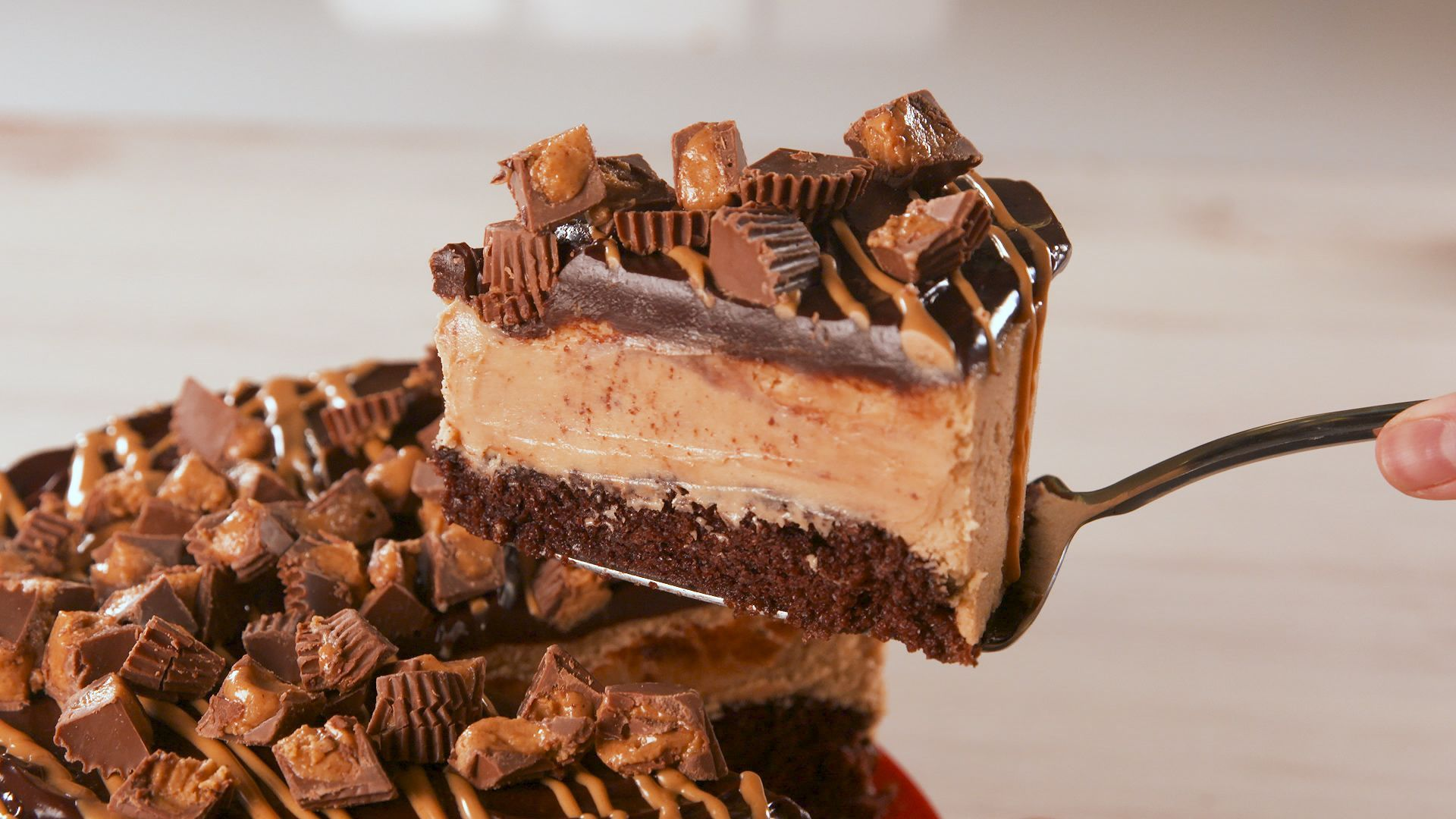 Best Chocolate Peanut Butter Cheesecake Recipe Chocolate Peanut Butter Cheesecake