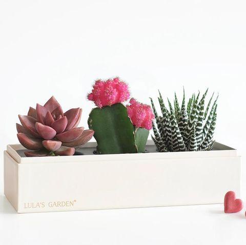 best flower delivery service online