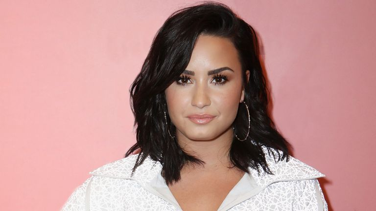 """Demi Lovato Claps Back at a Fan Who Called Her Team """"Rotten"""""""
