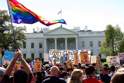 demonstrators  wave flags and banners in