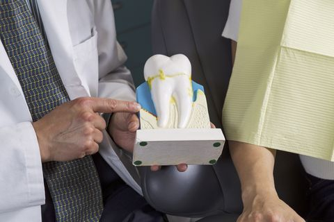 dentist showing patient how to care for teeth with display
