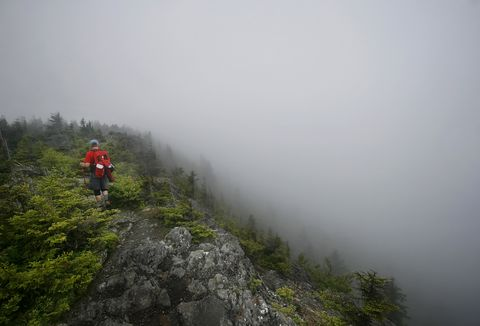 Tux Turkel follows the Appalachian Trail at the summit of Chairback Mountain, Wednesday, July 11, 20...