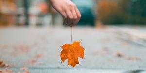 Cos'è è come combattere il mal d'autunno