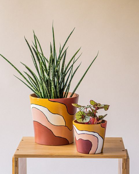 desert days planter