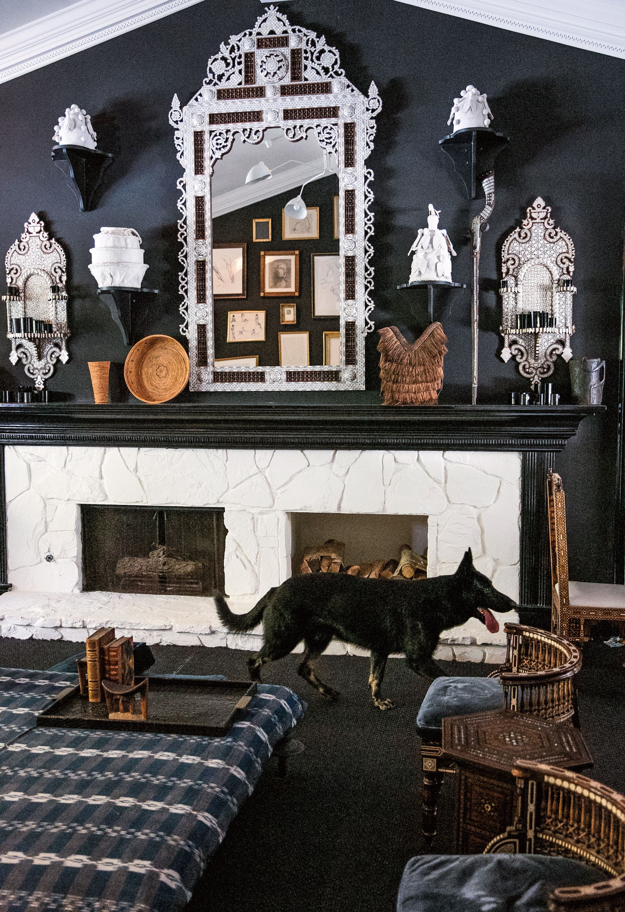 Dog Homes Interior Design on home security dogs, pets dogs, retirement dogs, health dogs, home defense dogs, law dogs, school dogs, new york dogs, food dogs, animals dogs, baby dogs,