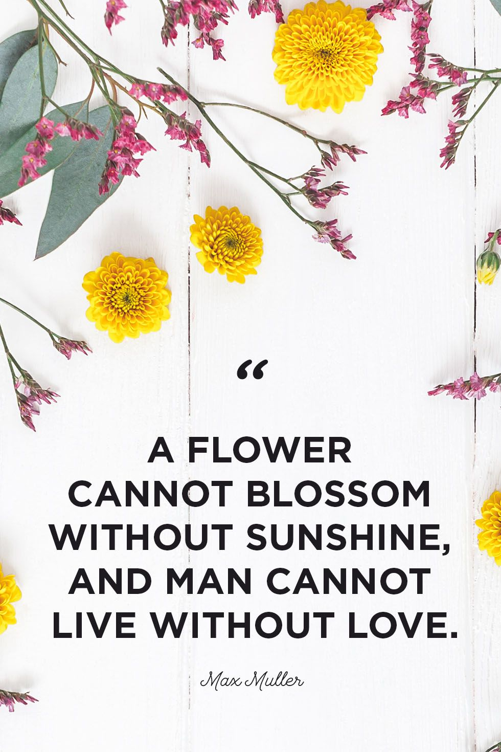 30 Inspirational Flower Quotes , Cute Flower Sayings About
