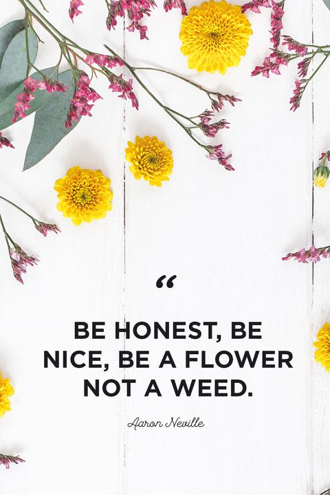 30 Inspirational Flower Quotes - Cute Flower Sayings About ...