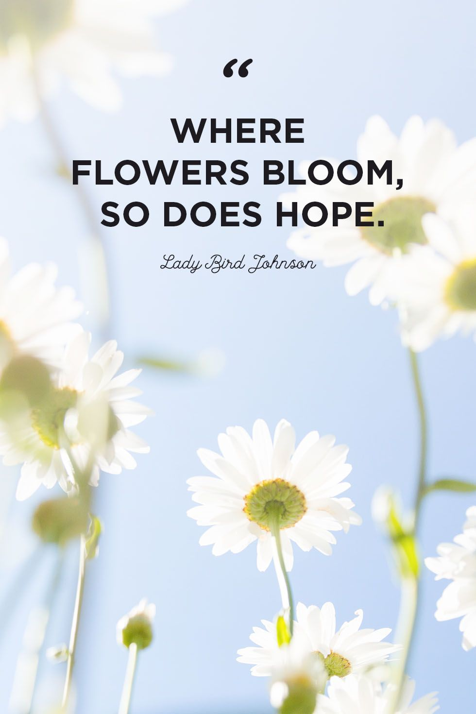30 Inspirational Flower Quotes - Cute Flower Sayings About Life and Love 5fb9ee8ecef