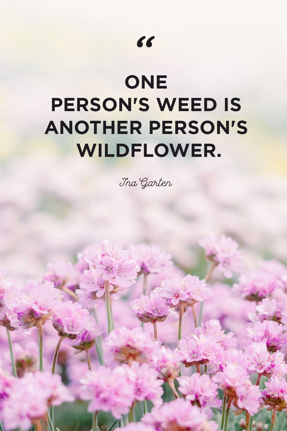 30 Inspirational Flower Quotes - Cute Flower Sayings About