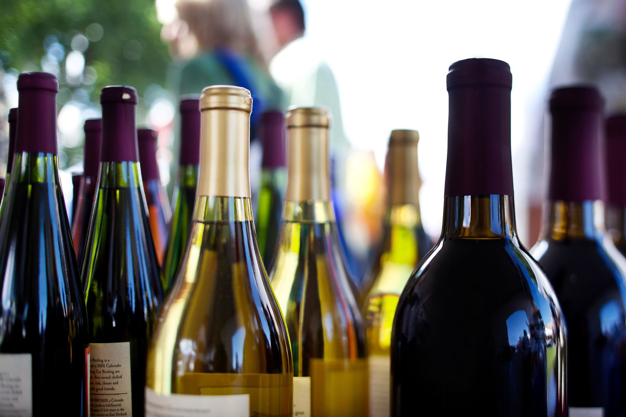 Wine Prices May Get a Whole Lot Cheaper Very Soon Because of an Surplus of Grapes