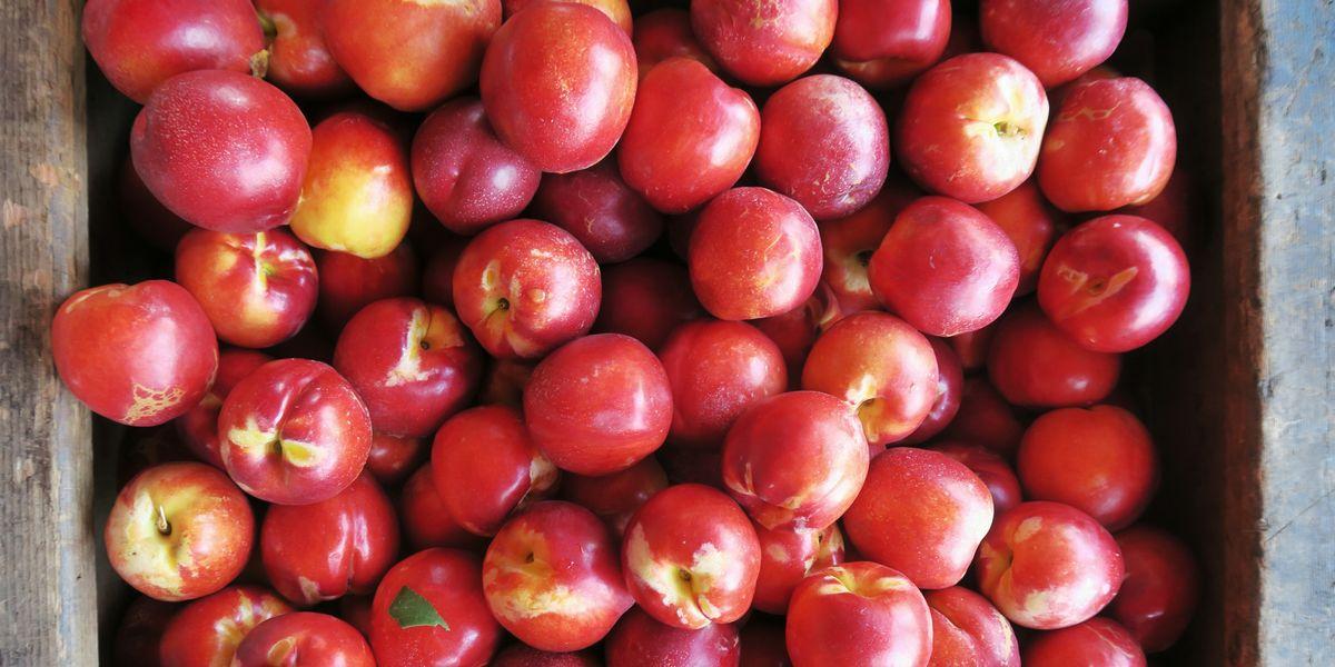 Aldi Costco Walmart Have Recalled Some Fruits Over
