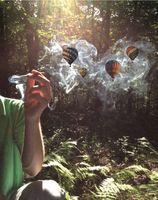 Danielle Evarts - Smoking Balloons