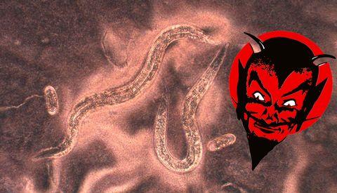 Demon, Fictional character, Cg artwork, Illustration, Supernatural creature, Fiction, Art,