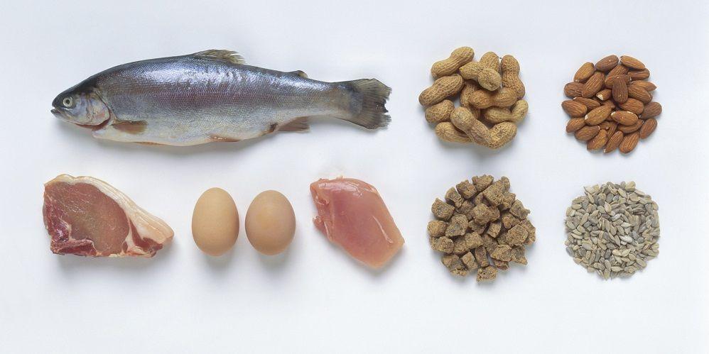producten met eiwitten