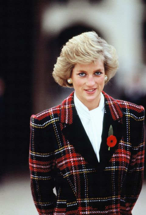 princess diana in france