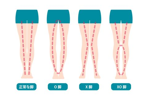 difference types of  legs angles and knees vector illustration  japanese