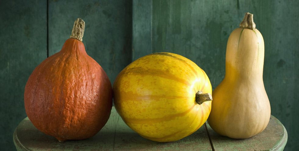16 Types of Squash and Everything You Need to Know About Them