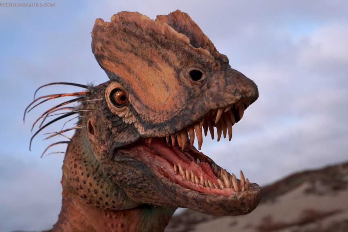 The Dilophosaurus Is a Lot Different Than We Think
