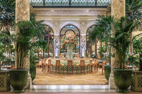 palm court plaza hotel - Nyc Restaurants Open Christmas Day