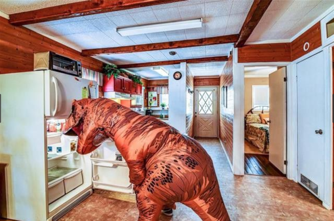 Dinosaur in Kitchen - Dinosaur Home Listing
