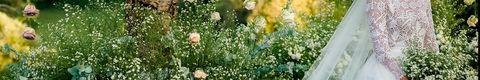 Wedding dress, Dress, Clothing, Bridal clothing, Gown, Flower, Plant, Bride, Botany, Spring,