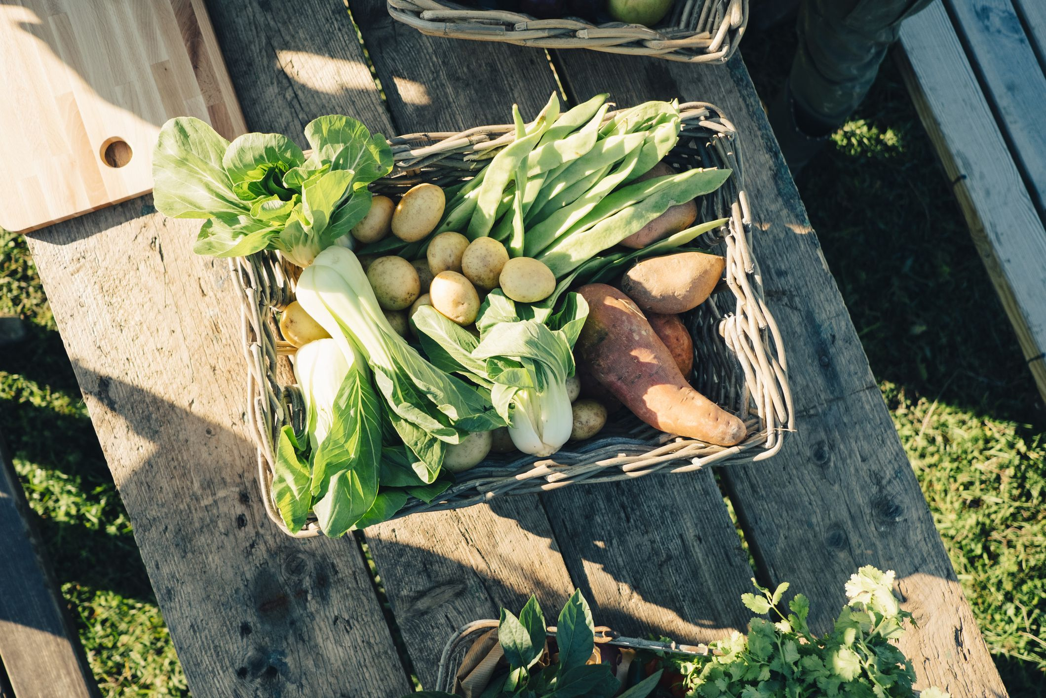 Clever hack shows how to grow your own produce using vegetable scraps