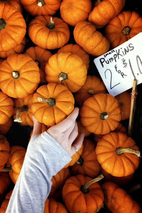 directly above shot of pumpkins at market