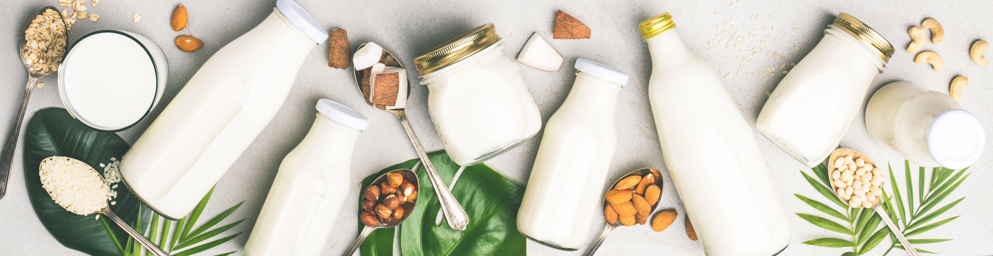 Vegetarian Substitute for Milk