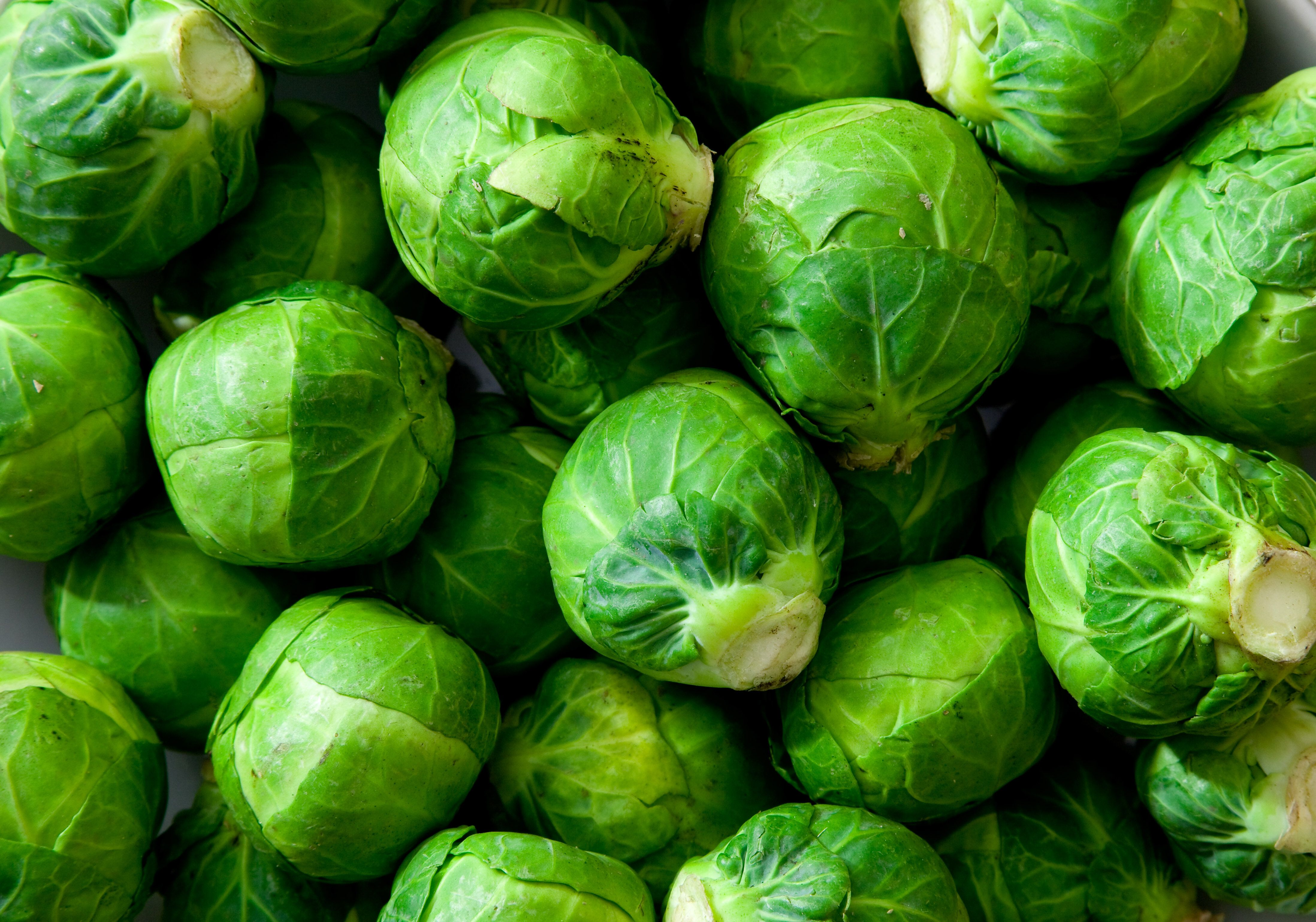 Brussels Sprouts Found to Boost Cell Growth In Muscles, Helping Them Repair and Grow