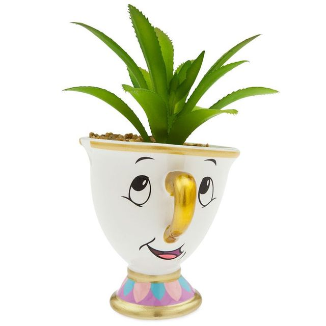 disney 'beauty and the beast' chip succulent