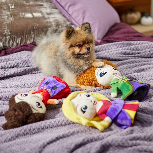 chewy disney halloween hocus pocus squeaky dog toys