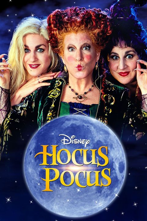 three wacky witches on a movie poster for the disney movie hocus pocus