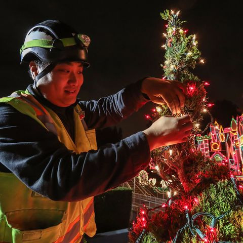 Disneyland Christmas Decorations - Decorating Cast Member