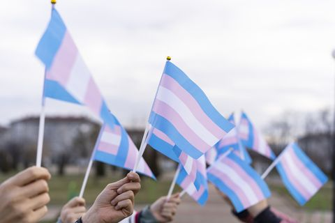 diverse people holding transgender flags