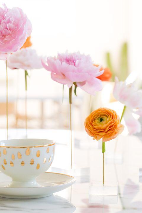 Orange, Pink, Flower, Yellow, Teacup, Cut flowers, Petal, Plant, Tableware, Drinkware,