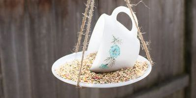 13 Diy Bird Feeders Homemade