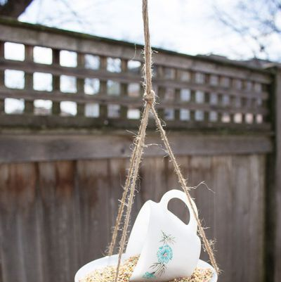 diy bird feeder ideas
