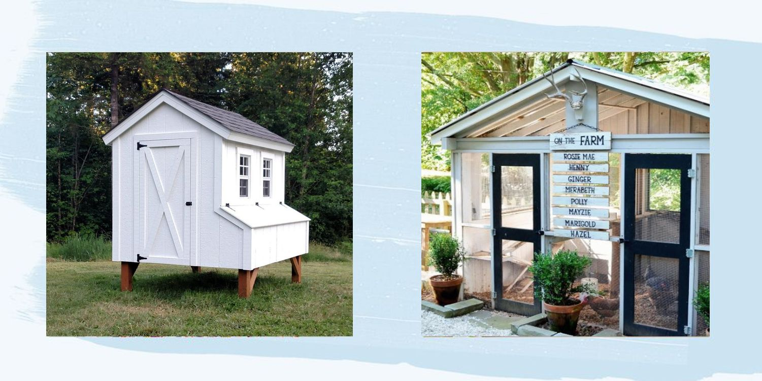 30 Chicken Coop Plans That Are Easy to Follow