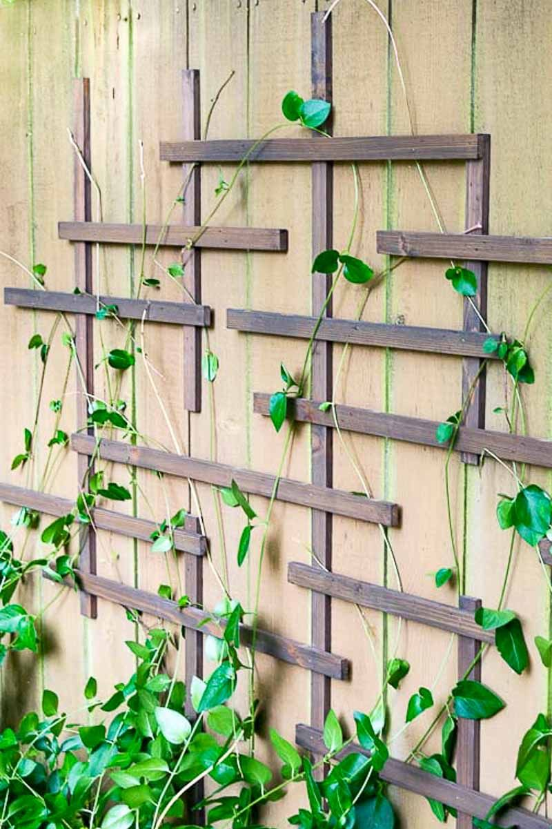 diy indoor trellis