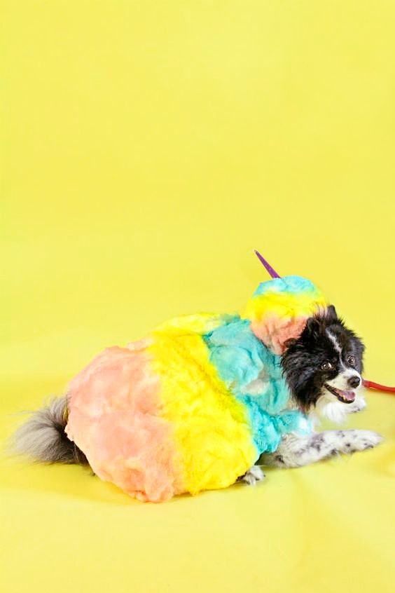 cotton candy dog halloween costume