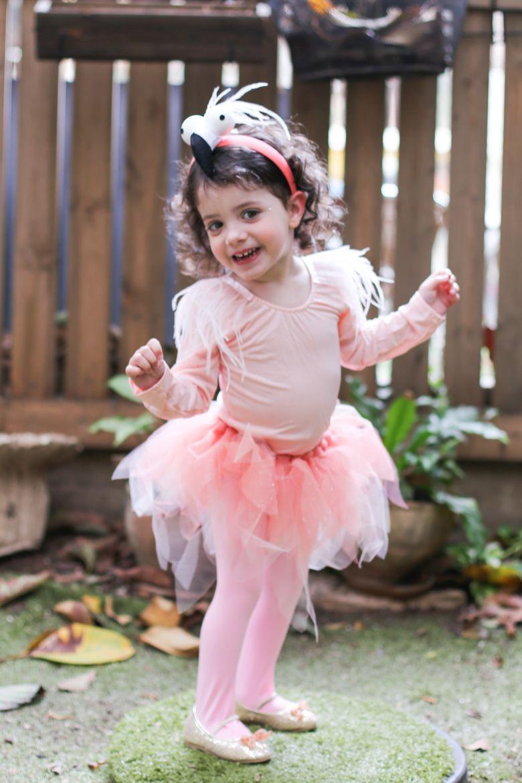 Diy Flamingo Costume For Kids. The Small Details. DIY Flamingo Toddler  Costume Idea