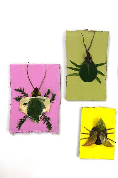 DIY Kids Activities - Nature Craft Bugs
