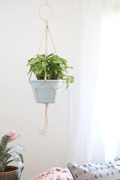 diy kitchen decor ideas diy macrame plant hanger