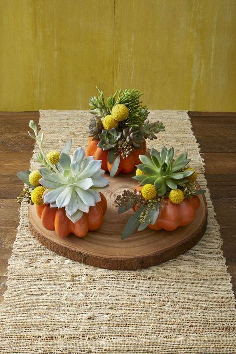 diy succulent pumpkin planters indoor halloween decorations