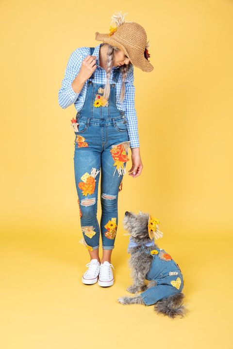 diy scarecrow costumes   mom and dog costume
