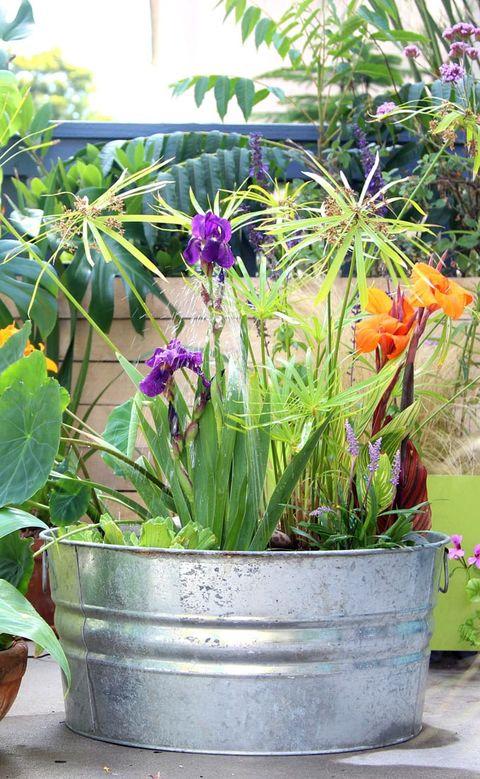 galvanized bucket diy fountain