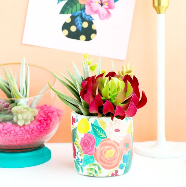 diy succulent vase