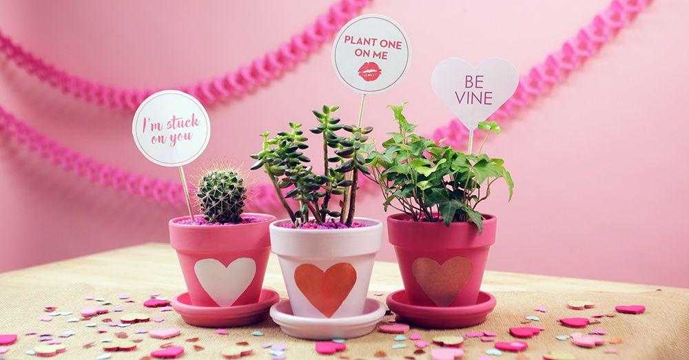 Diy Valentineu0027s Day Planters