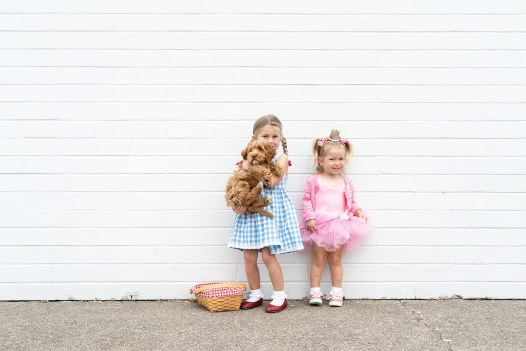 32 DIY Wizard of Oz Halloween Costumes for Dorothy, Scarecrow and the Whole Group