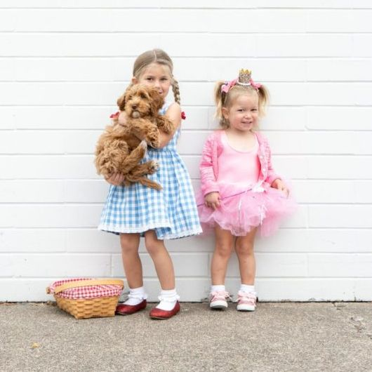 Halloween Ideas 2019 For Family Of 3.32 Diy Wizard Of Oz Halloween Costumes For Dorothy